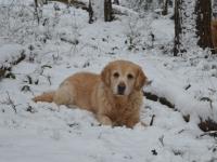 05_ Amy in de sneeuw 9 jaar oud