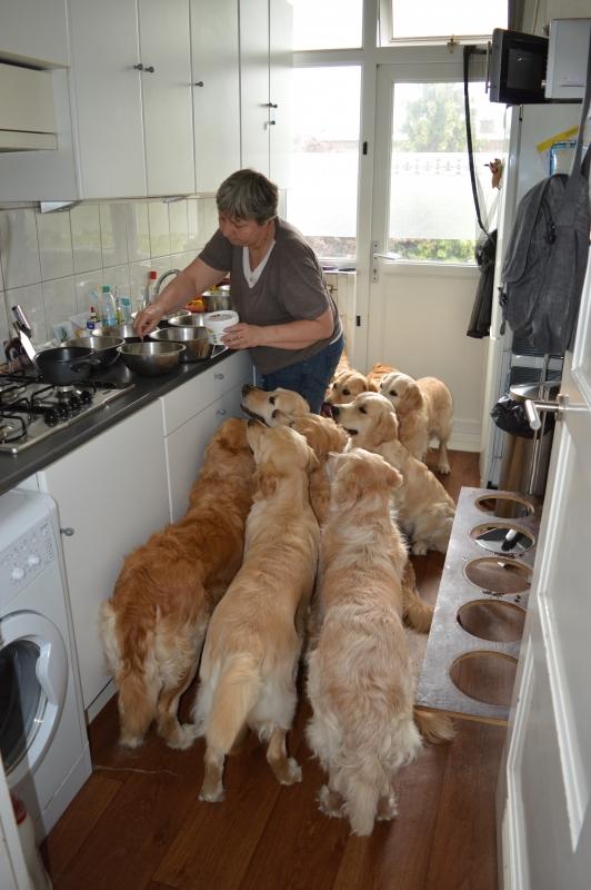 wachten op het eten